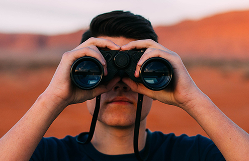 Super fund member searching for yield
